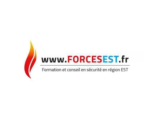 forcesest
